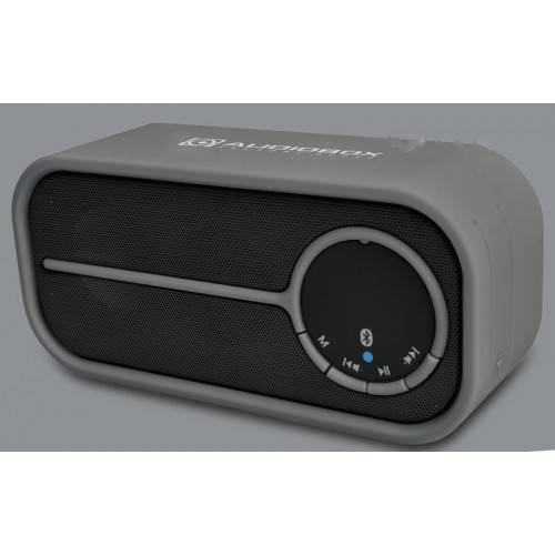 Best Bluetooth Portable Speaker Under 2000: Buy AUDIOBOX PORTABLE BLUETOOTH SPEAKER P2000-BTMI In Nepal On Best Price